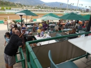 Day at Races 002