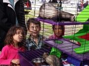 Wildlife Waystation & kids