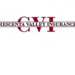 CVI Logo Smaller.JPG